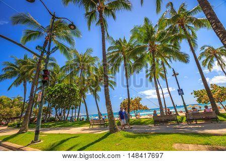 Waikiki , Oahu, HI - August 27, 2016: Kalakaua Avenue with its palms and its promenade near Kuhio Beach Park, a section of Waikiki Beach, Honolulu.Kalakaua Avenue as the most popular street of Waikiki.