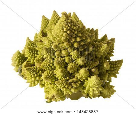 green cabbage isolated over a white background