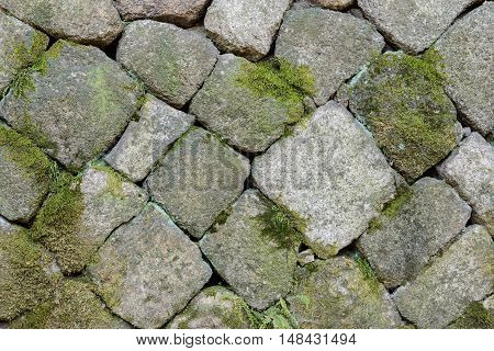 Close up of stone wall background with moss and creeper