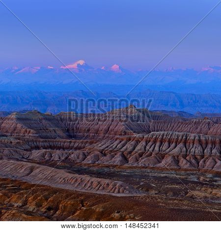 Earth Forest National Geopark In Tibet