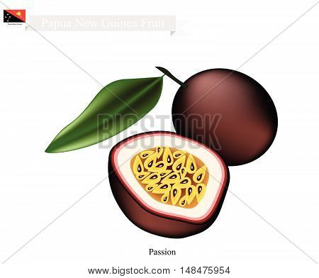 Papua New Guinea Fruit Illustration of Maracuja or Passion Fruit. One of The Most Popular Fruits in Papua New Guinea..