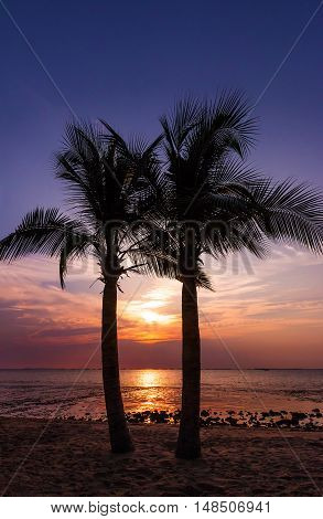 Two coconut trees silhouette on sunset tropical beach