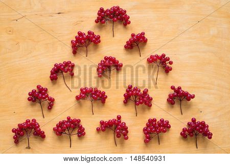 Red berries of viburnum placed in a pyramid on a wooden background.