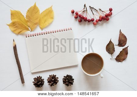 Autumn yellow and brown leaves, small red apples, rennet, cones, a cup of coffee and a notebook on a white board.