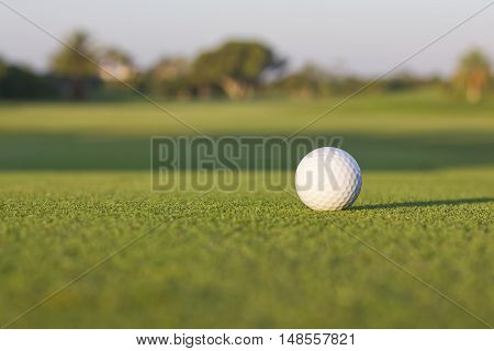 Isolated white golf ball waiting on the grass.