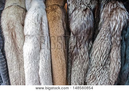 Fur coats made for ladies and exposed for sale.