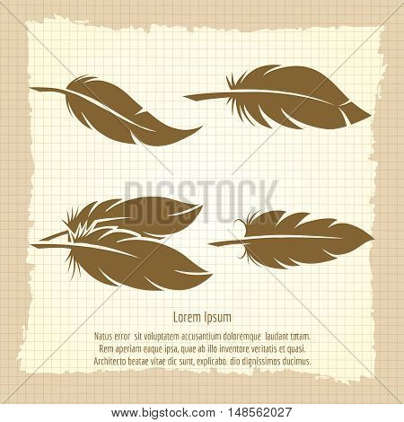 Vintage feather set on notebook page in retro design vector illustration