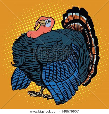 Poultry Turkey, realistic pop art retro vector illustration. Farm animal. Thanksgiving day