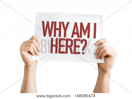Why Am I Here? placard isolated on white background