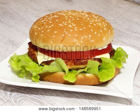 Colorfull Fish Burger with chees and tomato