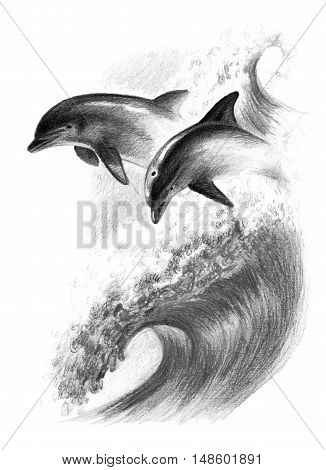 Monochrome pencil drawing: two dolphins on a wave