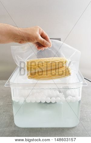 Sous vide cooking of corncobs in a sous vide precision immersion cooker with water and water balls