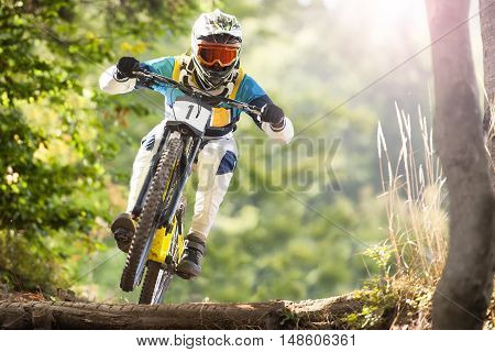 Downhill mountain biker rides in sunny forest
