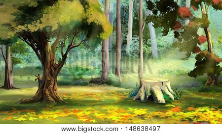 Beautiful view of Old Tree Stump in the Autumn Forest. Digital Painting Background Illustration.