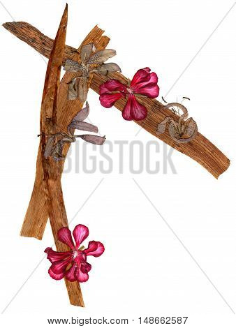 long pressed stiff brown iris leaves application a bouquet of dried pressing red geranium flowers and liliac