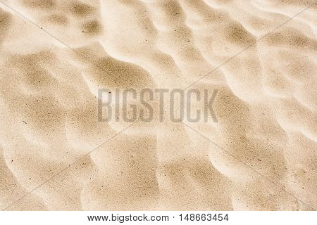 sand of a beach in the summer