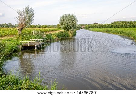 Wooden fishing dock on a small river with pollard willows and reeds in a picturesque Dutch summer landscape.