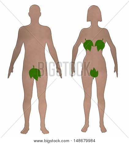 Toilet sign 3D illustration with realistic shaped nude male and female with their private parts covered with leaves on an isolated white background with a clipping path