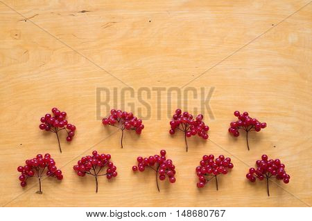 Red berries of viburnum placed in two rows on a wooden background.