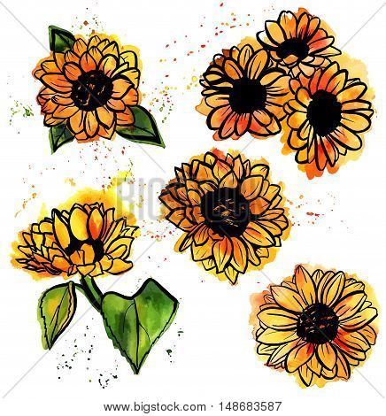 A set of freehand vector and watercolor drawings of yellow sunflowers with splashes of paint on white background