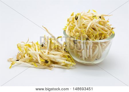 Bean sprouts on glass bowl over white background