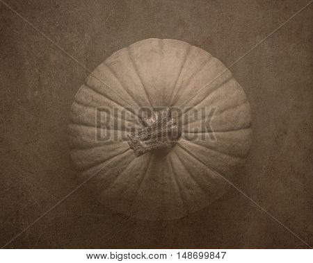 Vintage style image of a pumpkin from the top
