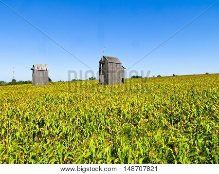 Old wooden mill without wings on the field