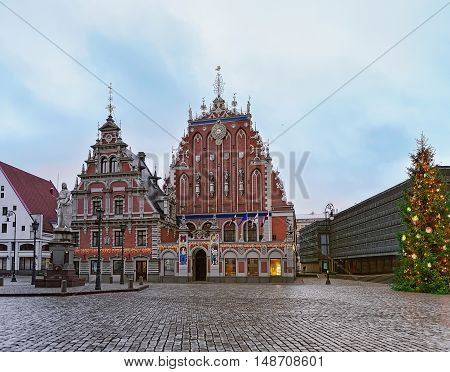 House Of The Blackheads And Christmas Tree In Riga