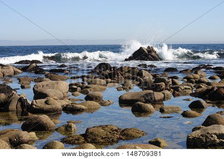 This is an image of tide pools at low tide taken on a sunny  morning in Pacific Grove, California.