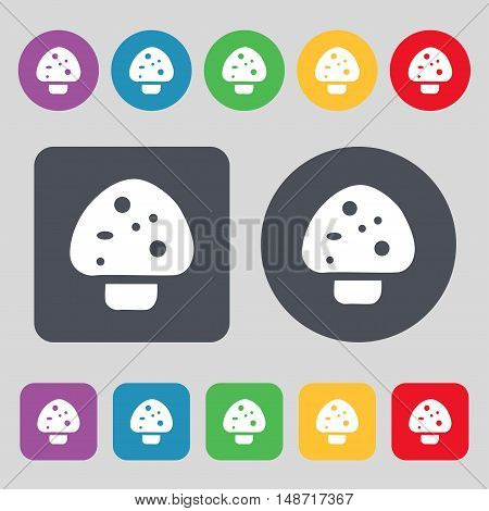 Mushroom Icon Sign. A Set Of 12 Colored Buttons. Flat Design. Vector