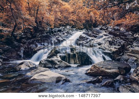 Scottish Highlands Creek Cascade with Autumnal Trees in Background