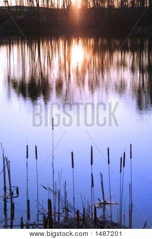 Sun Set Reflection