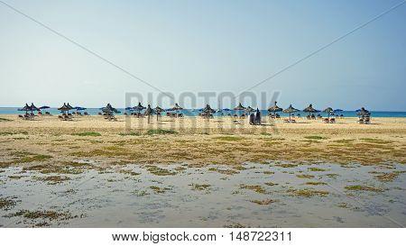 tropical beach on sal island on sal island