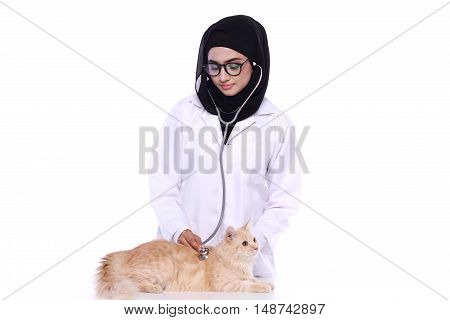 muslimah doctor holding a cat isolated in white background