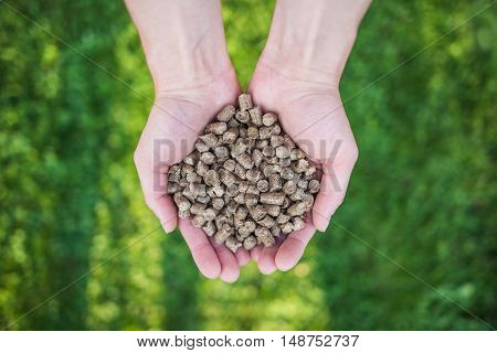 Wood pellets on women's hands. Grass in the background.