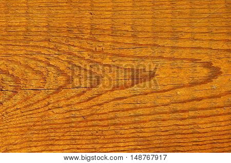 wood texture painted impregnated in the sunset / abstract random pattern