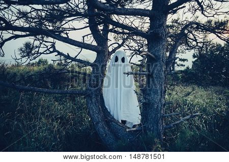 Man in costume of white sheet ghost with black eyes walking among old dry trees outdoor. Theme of Halloween and horror