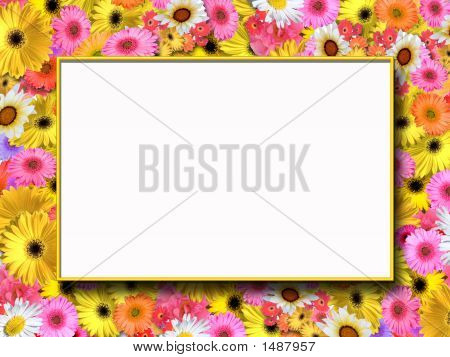 Summer Flowers Frame