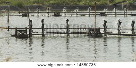 Water aeration turbine in farming aquatic. Shrimp and fish hatchery business in Thailand.
