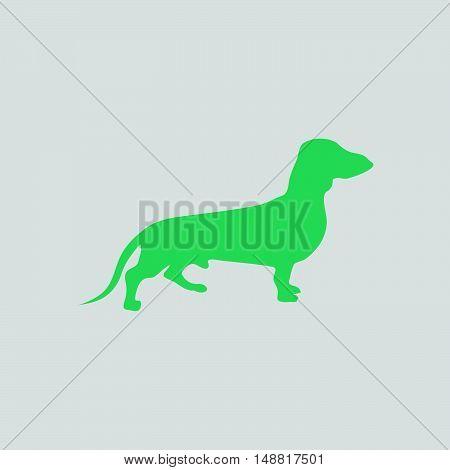 Dachshund Dog Icon