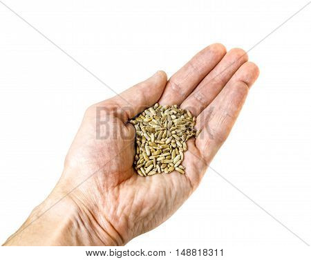 A palm filled with grain shot isolated on white background