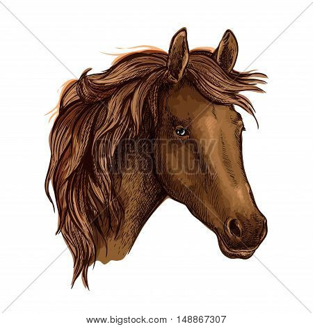 Brown graceful horse portrait. Wild mustang with sad shiny eyes and wavy mane