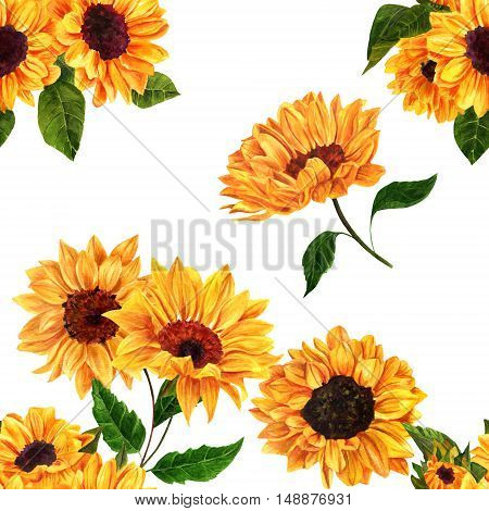 A seamless pattern with hand drawn vibrant yellow watercolor sunflowers on white background, vintage style floral repeat print