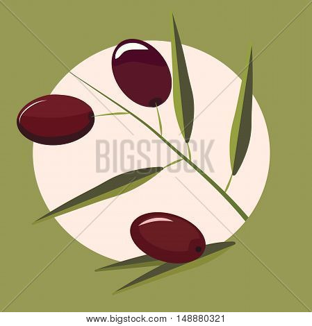 High quality original trendy vector olive branch with leaves for label, sale