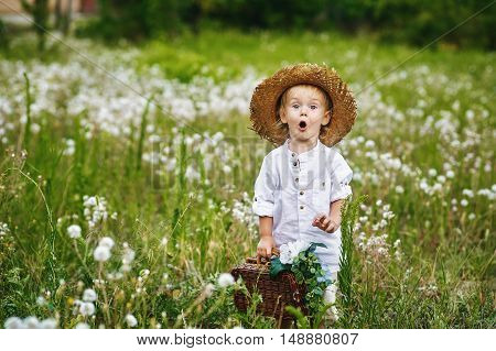 Little boy in field with dandelions , dressed in retro clothes
