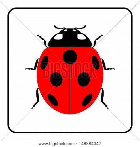 Ladybug small icon. Red lady bug sign isolated on white background.