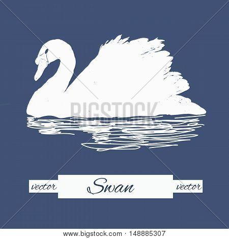 Vector illustration of stylization swan for logo design, stamp