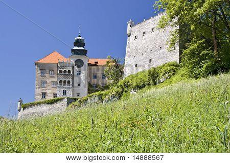 Beautiful renaissance castle.