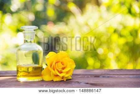 Essential rose oil. Fragrant yellow rose. Aromatherapy and massage. The magic elixir for body and hair. Natural cosmetic. Natural green background. Green blur. Copy space. Spa concept.
