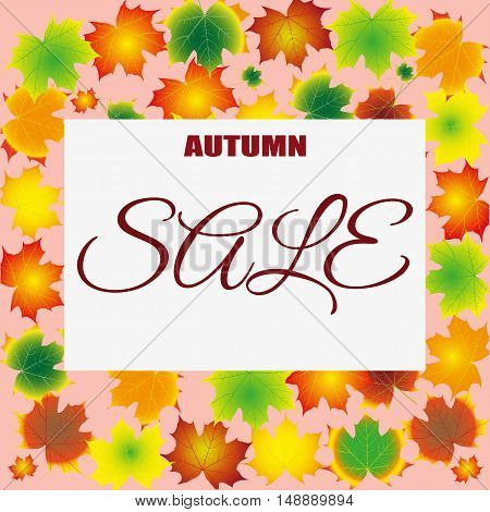 seasonal autumn sales background with colored leafs